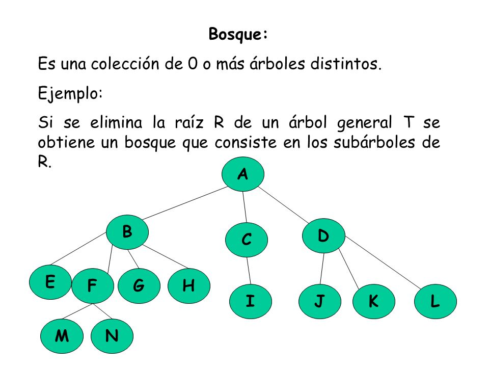 Bosque: Es una colección de 0 o más árboles distintos. Ejemplo: