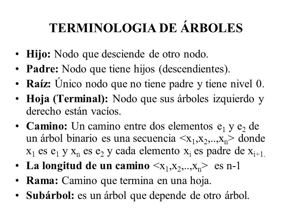 TERMINOLOGIA DE ÁRBOLES