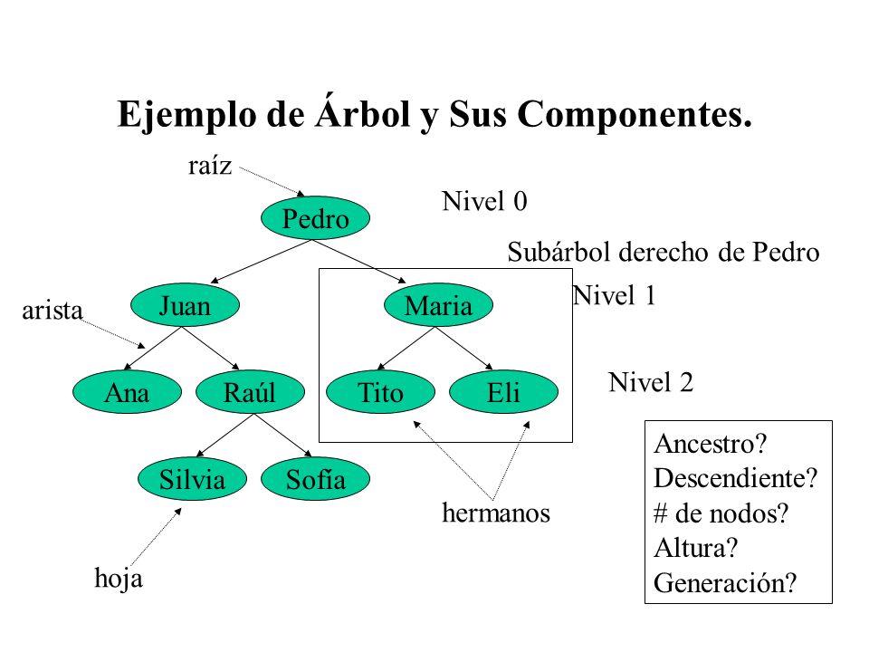 Ejemplo de Árbol y Sus Componentes.