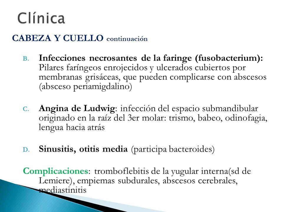Clínica CABEZA Y CUELLO continuación