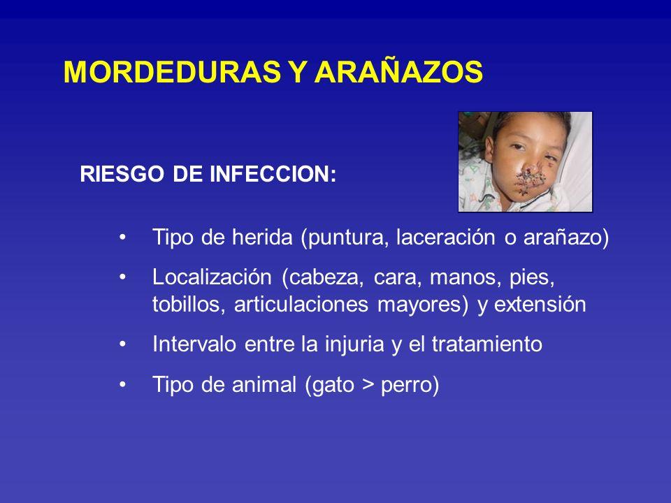 MORDEDURAS Y ARAÑAZOS RIESGO DE INFECCION: