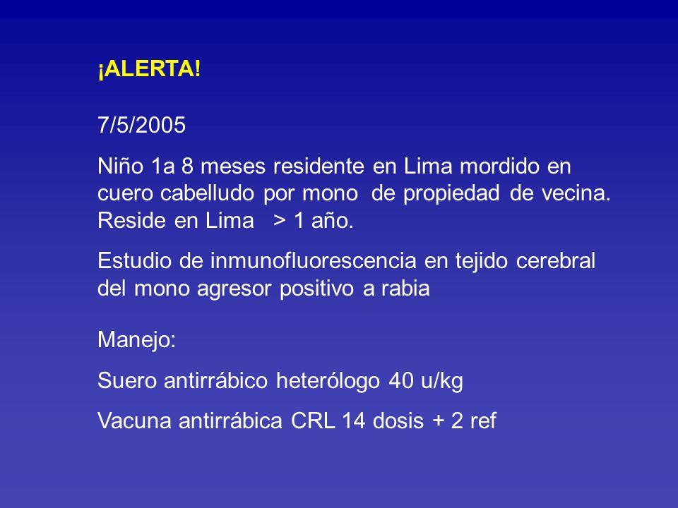 ¡ALERTA! 7/5/2005. Niño 1a 8 meses residente en Lima mordido en cuero cabelludo por mono de propiedad de vecina. Reside en Lima > 1 año.