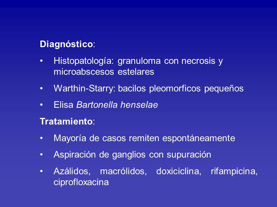 Diagnóstico: Histopatología: granuloma con necrosis y microabscesos estelares. Warthin-Starry: bacilos pleomorficos pequeños.