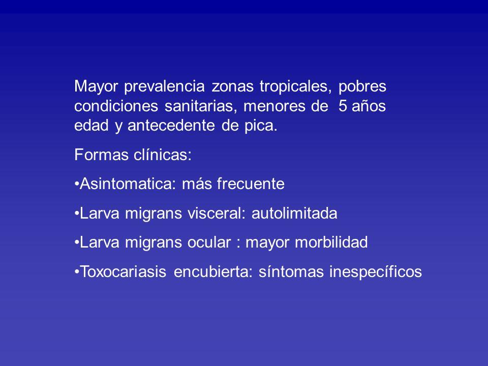 Mayor prevalencia zonas tropicales, pobres condiciones sanitarias, menores de 5 años edad y antecedente de pica.