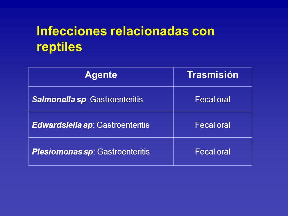 Infecciones relacionadas con reptiles
