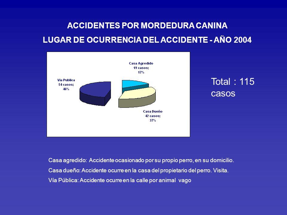 LUGAR DE OCURRENCIA DEL ACCIDENTE - AÑO 2004