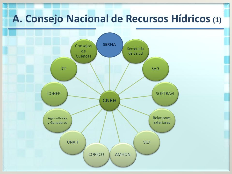 A. Consejo Nacional de Recursos Hídricos (1)