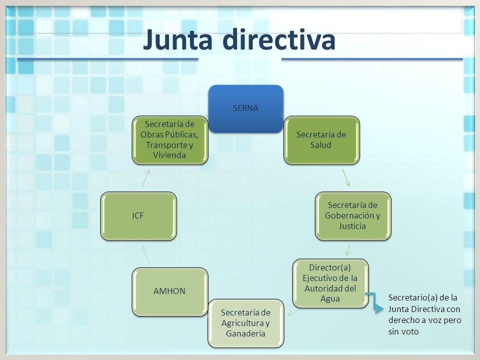 Junta directiva SERNA Secretaría de Salud