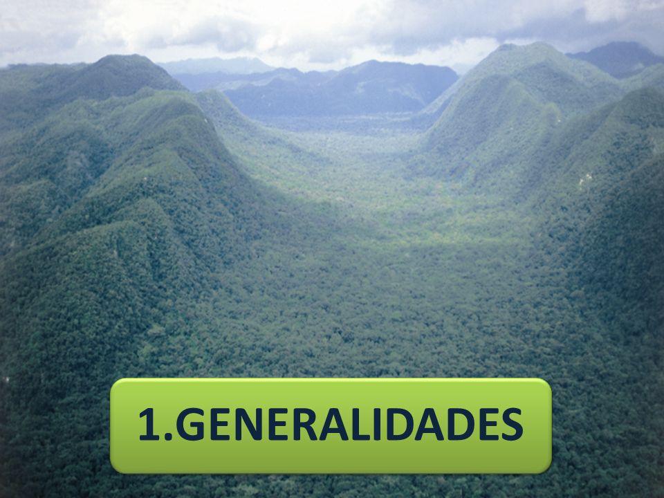1.GENERALIDADES