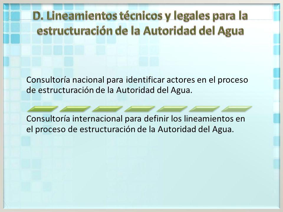 D. Lineamientos técnicos y legales para la estructuración de la Autoridad del Agua
