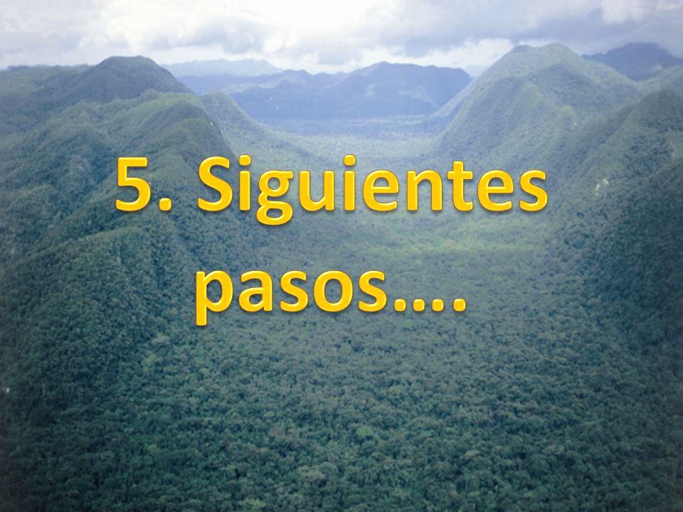 5. Siguientes pasos….