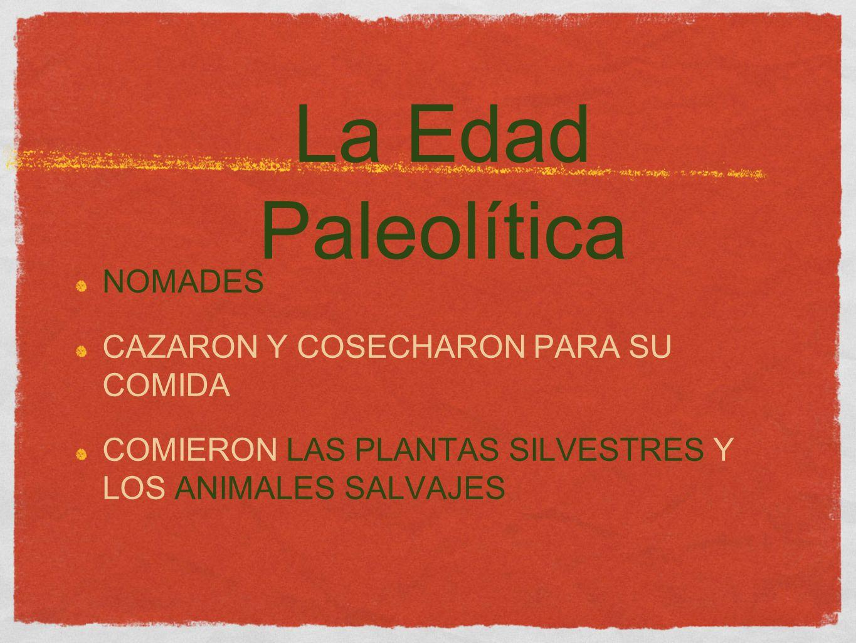 La Edad Paleolítica NOMADES CAZARON Y COSECHARON PARA SU COMIDA