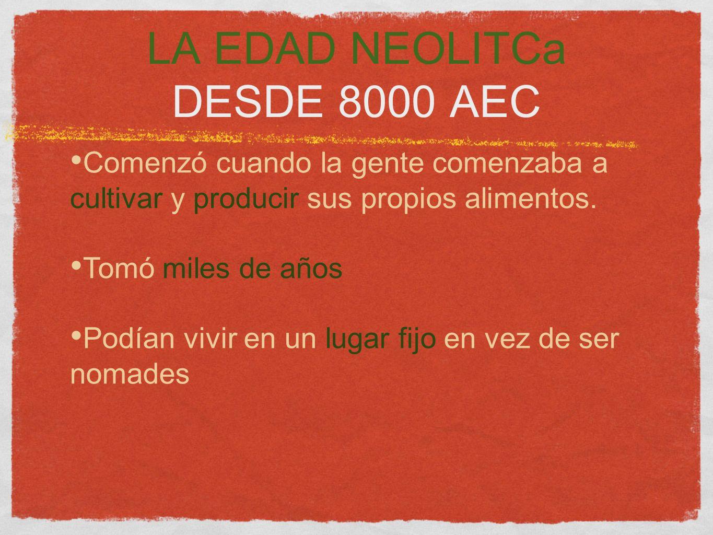 LA EDAD NEOLITCa DESDE 8000 AEC