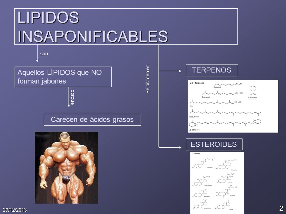 LIPIDOS INSAPONIFICABLES