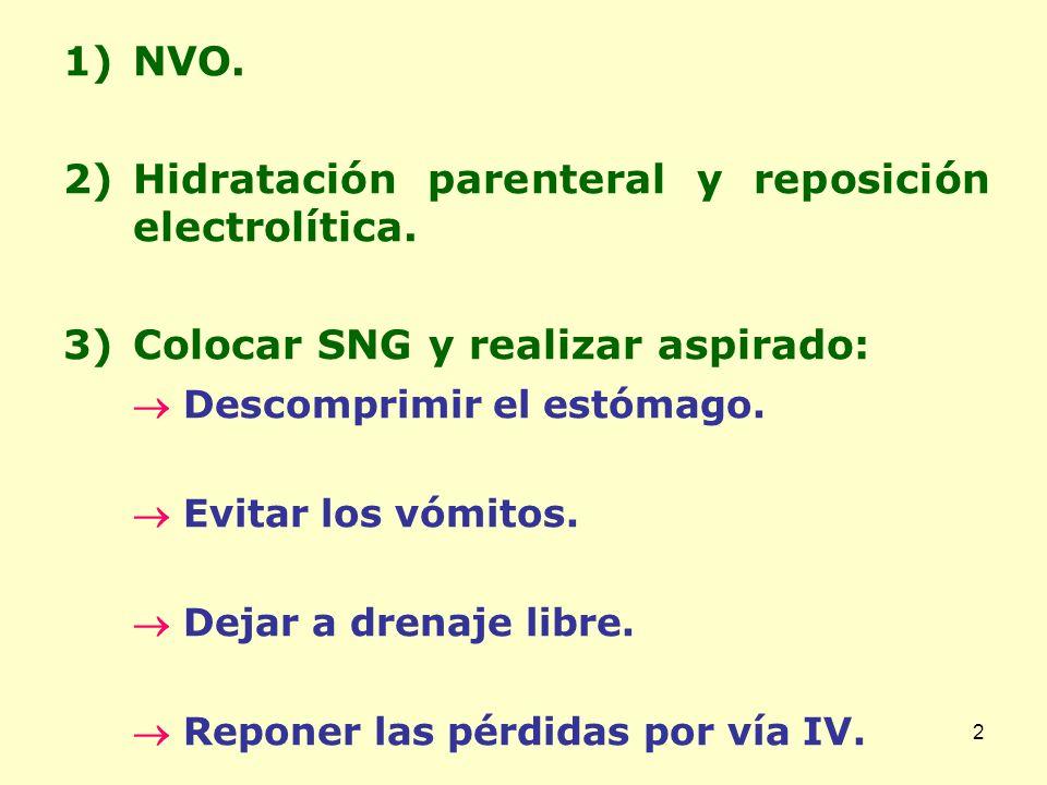Hidratación parenteral y reposición electrolítica.