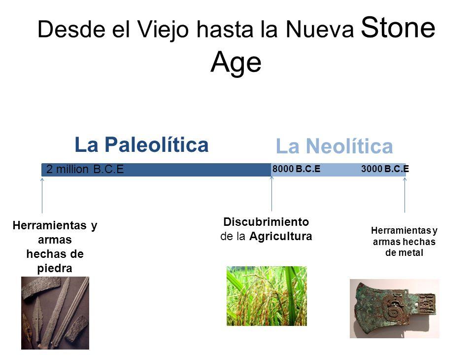 Desde el Viejo hasta la Nueva Stone Age