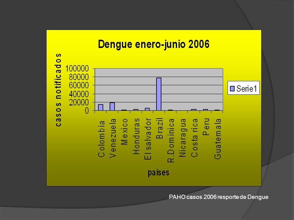 PAHO casos 2006 resporte de Dengue