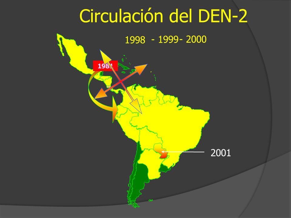 Circulación del DEN-2 - 1999 1998 - 2000 1981 2001