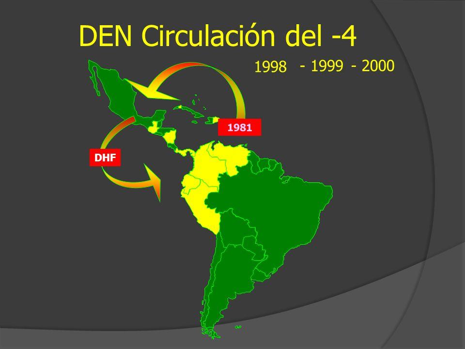 DEN Circulación del -4 1998 - 1999 - 2000 1981 DHF