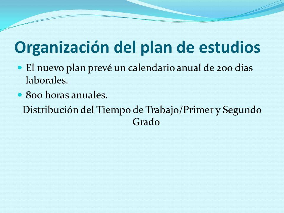 Organización del plan de estudios