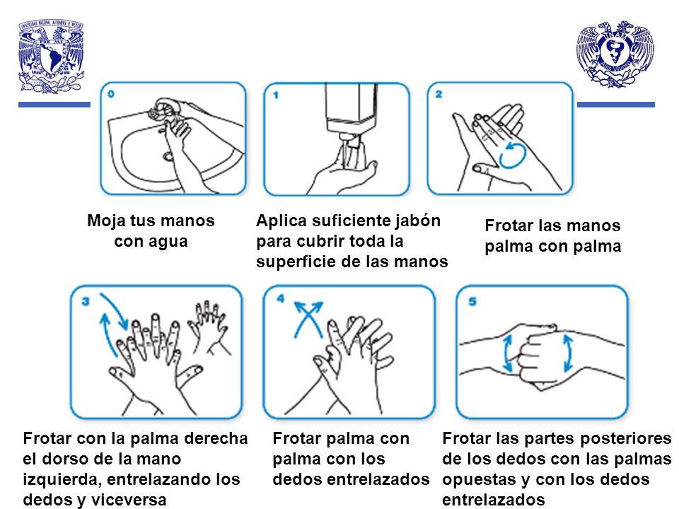 Moja tus manos con aguaAplica suficiente jabón para cubrir toda la superficie de las manos. Frotar las manos palma con palma.