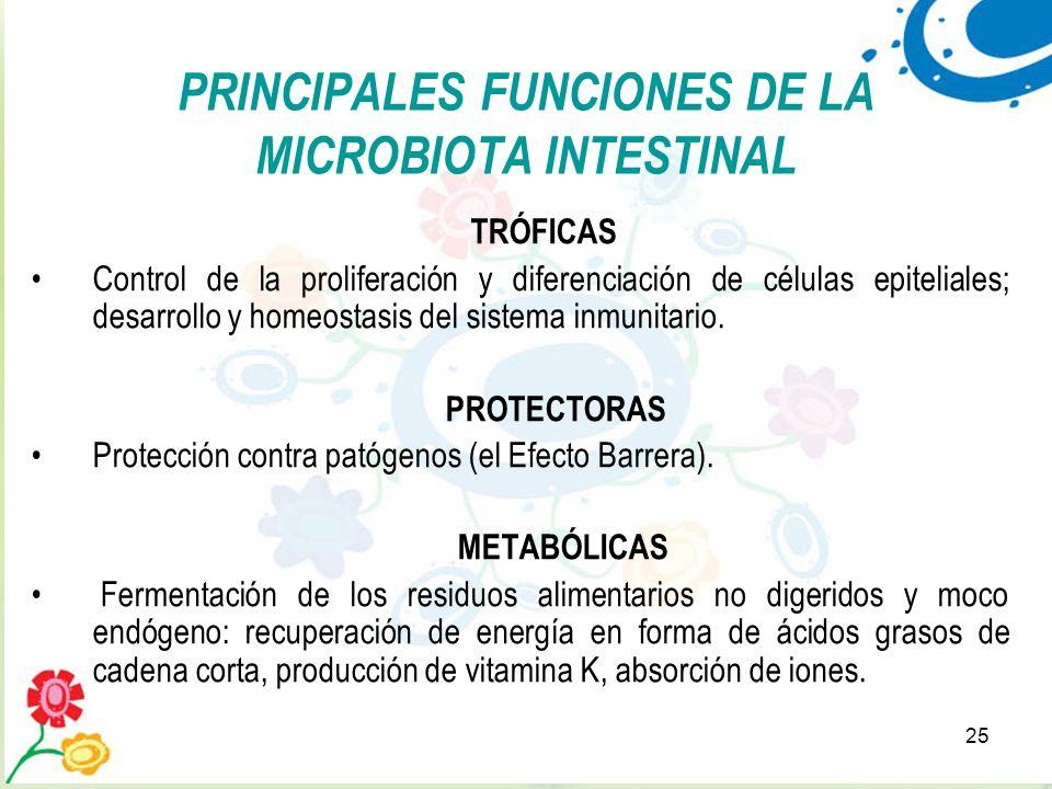 PRINCIPALES FUNCIONES DE LA MICROBIOTA INTESTINAL