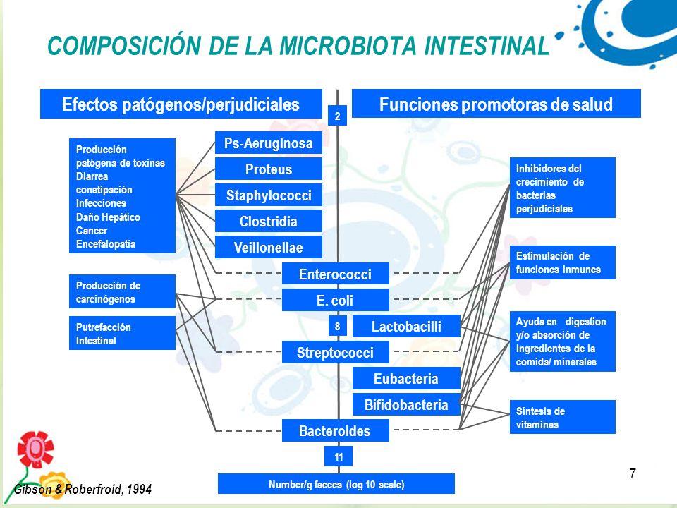 COMPOSICIÓN DE LA MICROBIOTA INTESTINAL
