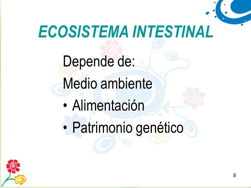 ECOSISTEMA INTESTINAL