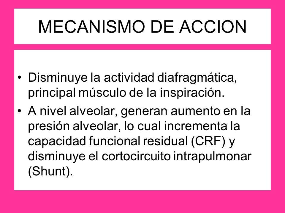 MECANISMO DE ACCION Disminuye la actividad diafragmática, principal músculo de la inspiración.