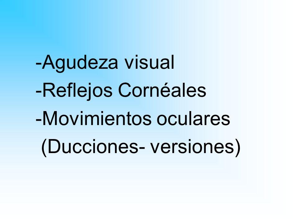 Agudeza visual Reflejos Cornéales Movimientos oculares (Ducciones- versiones)