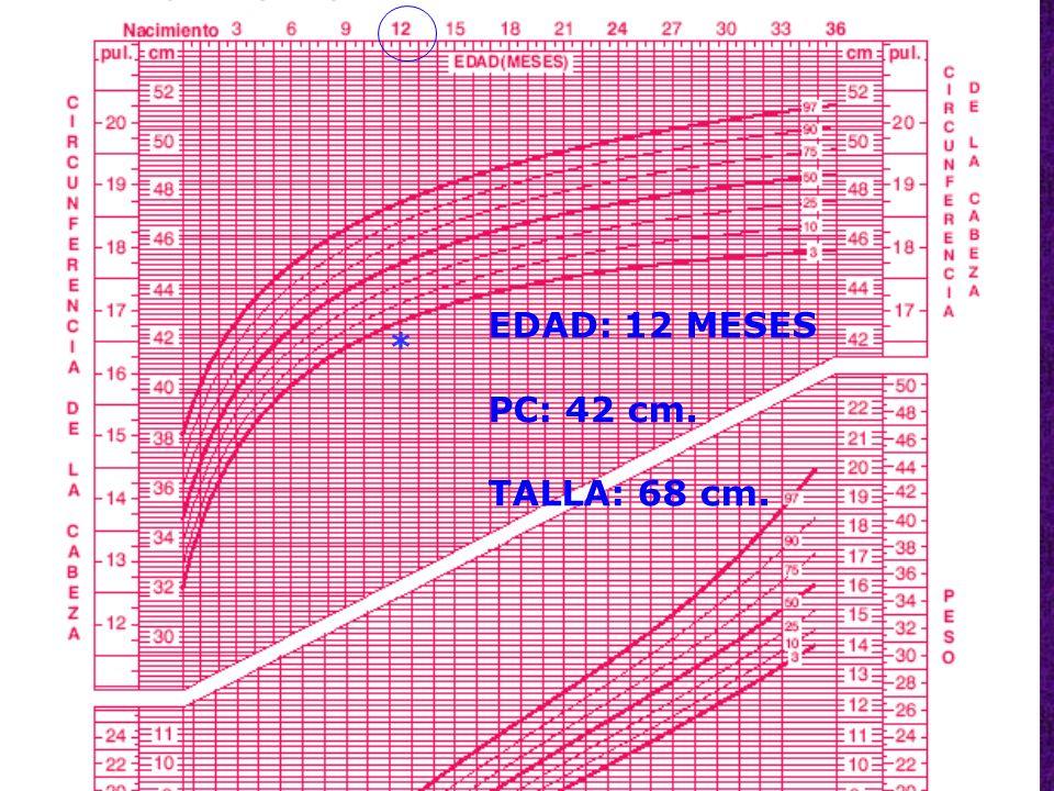 EDAD: 12 MESES PC: 42 cm. TALLA: 68 cm. *