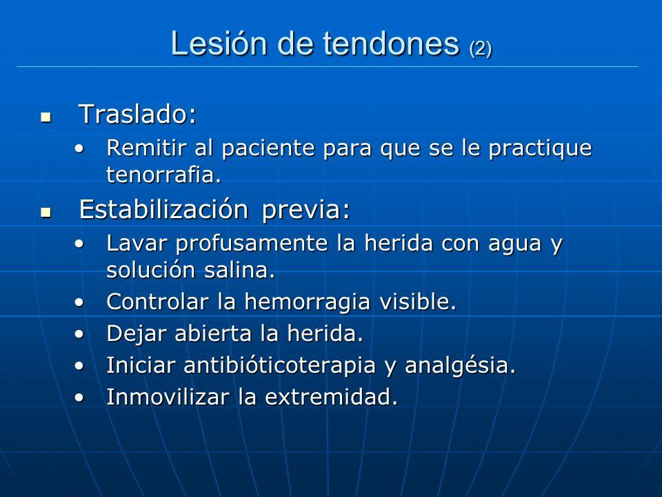 Lesión de tendones (2) Traslado: Estabilización previa: