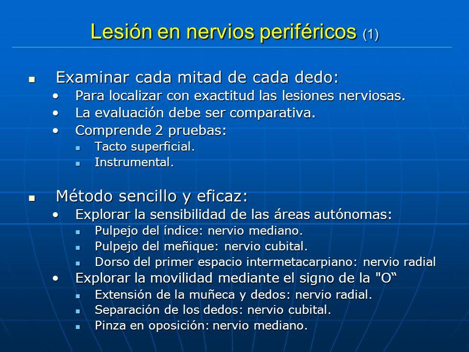 Lesión en nervios periféricos (1)