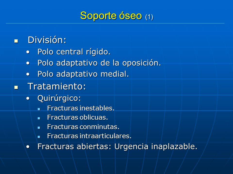 Soporte óseo (1) División: Tratamiento: Polo central rígido.