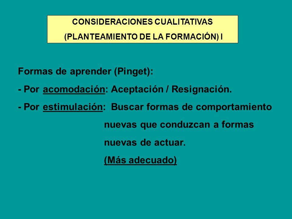 CONSIDERACIONES CUALITATIVAS (PLANTEAMIENTO DE LA FORMACIÓN) I