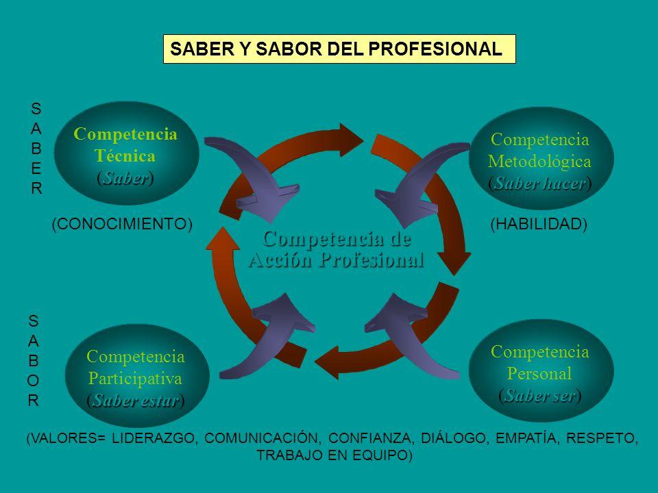 Competencia de Acción Profesional