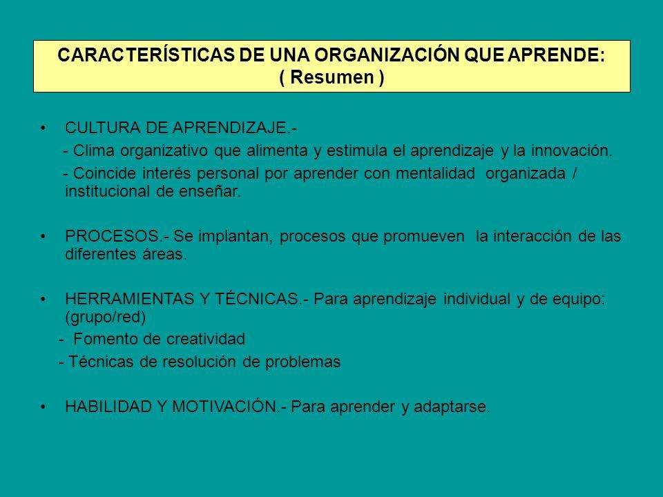 CARACTERÍSTICAS DE UNA ORGANIZACIÓN QUE APRENDE: ( Resumen )