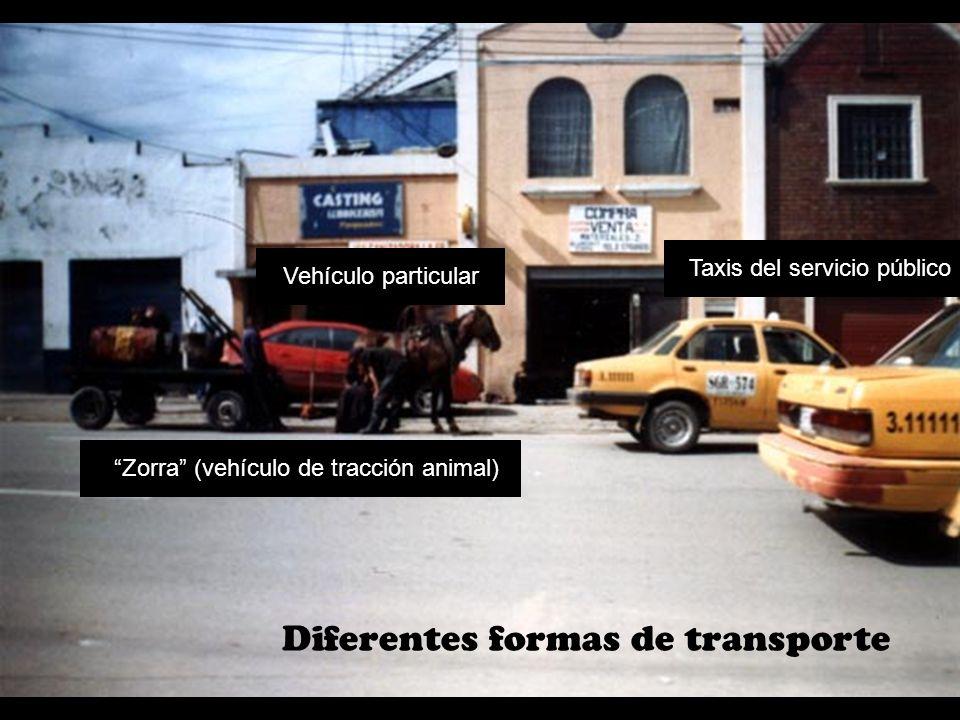 Diferentes formas de transporte