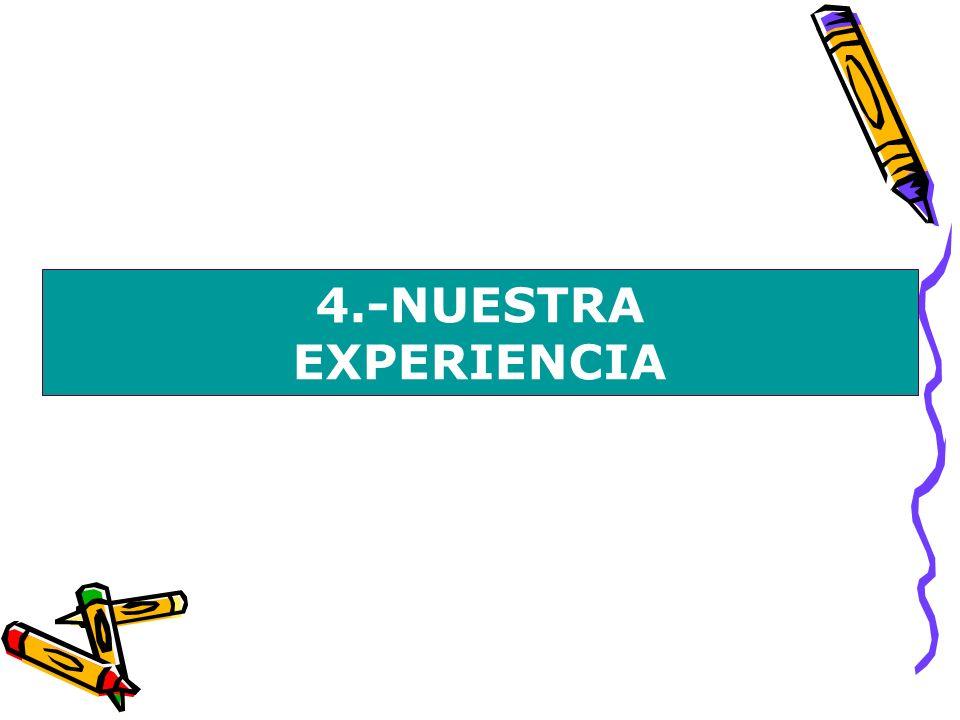 4.-NUESTRA EXPERIENCIA