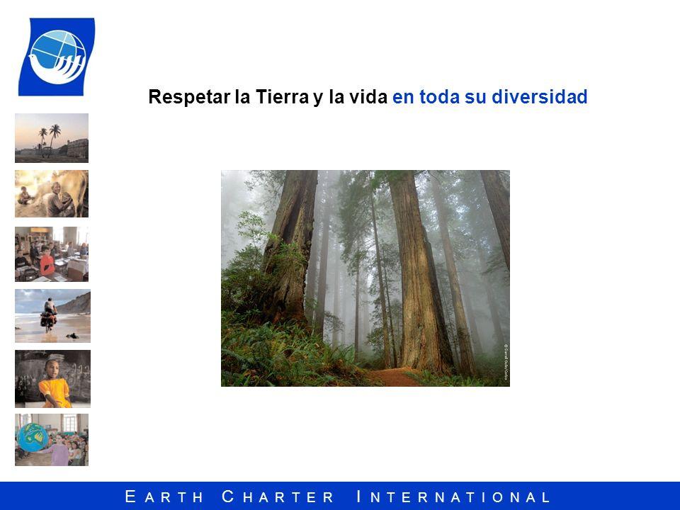 Respetar la Tierra y la vida en toda su diversidad