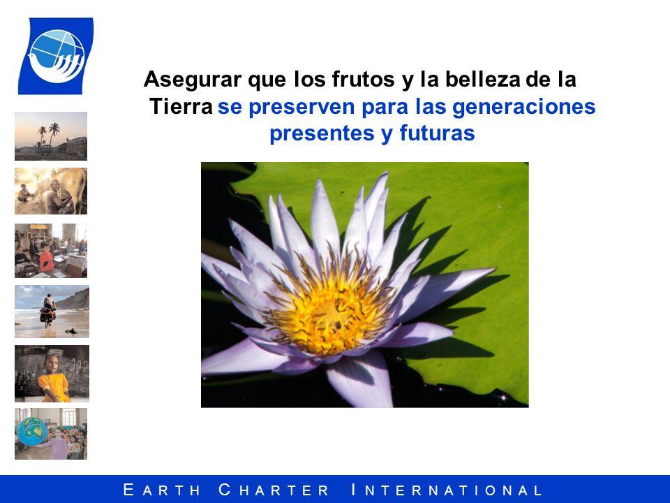 Asegurar que los frutos y la belleza de la Tierra se preserven para las generaciones presentes y futuras