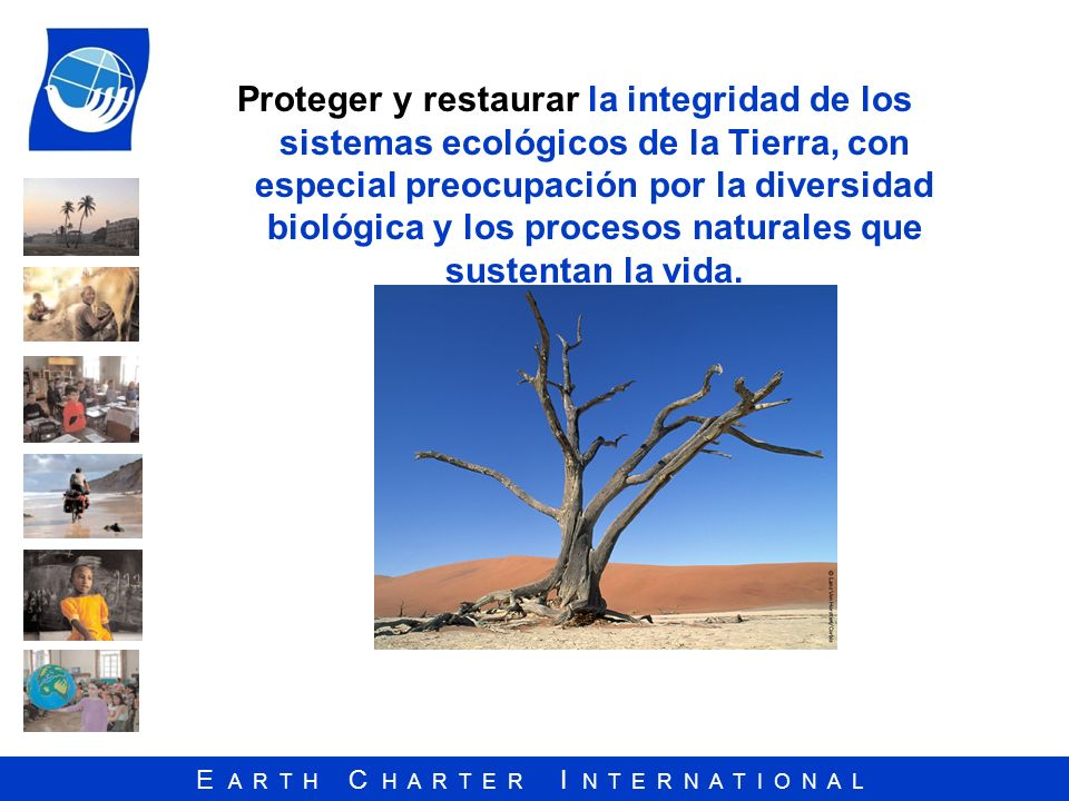 Proteger y restaurar la integridad de los sistemas ecológicos de la Tierra, con especial preocupación por la diversidad biológica y los procesos naturales que sustentan la vida.