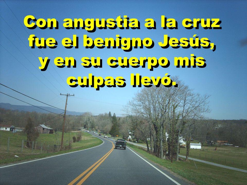 Con angustia a la cruz fue el benigno Jesús,