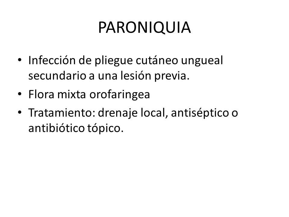 PARONIQUIA Infección de pliegue cutáneo ungueal secundario a una lesión previa. Flora mixta orofaringea.