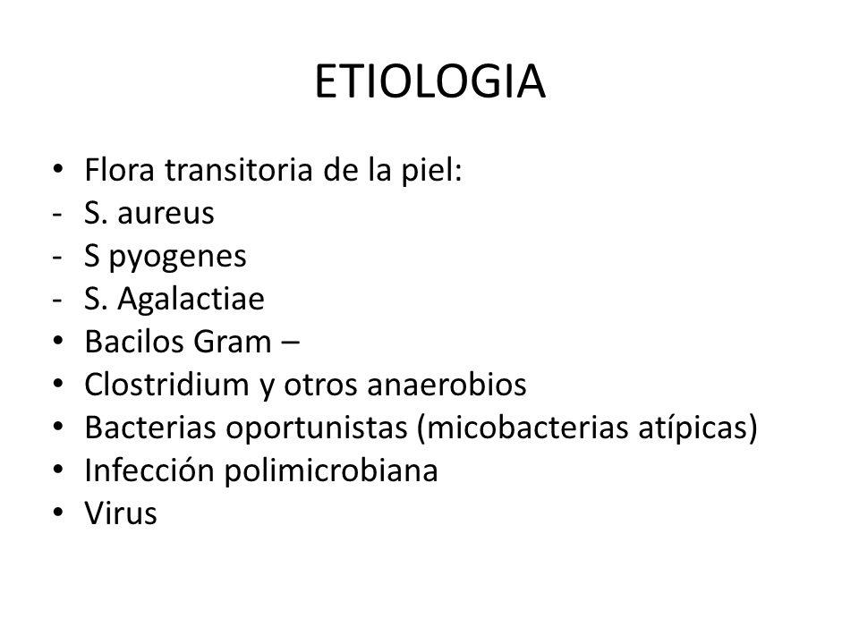 ETIOLOGIA Flora transitoria de la piel: S. aureus S pyogenes