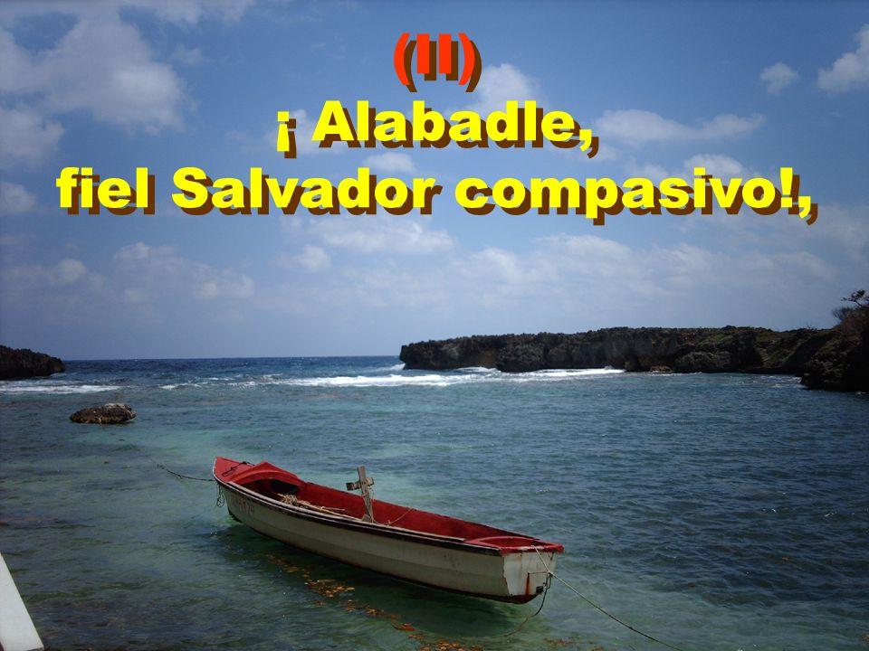 fiel Salvador compasivo!,