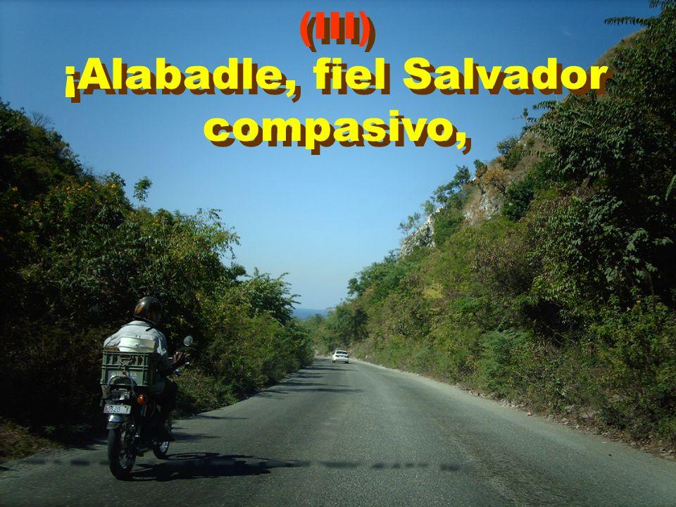 ¡Alabadle, fiel Salvador compasivo,