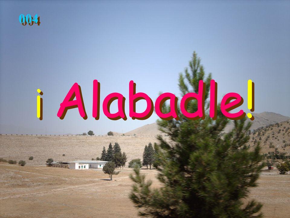 004 ¡ Alabadle!