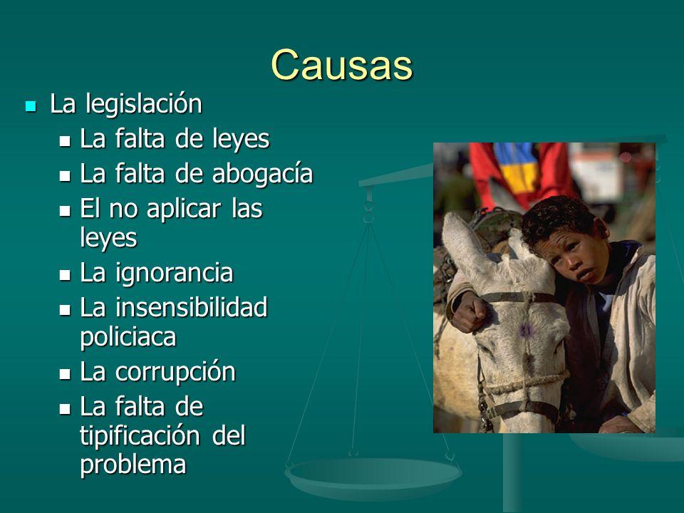 Causas La legislación La falta de leyes La falta de abogacía