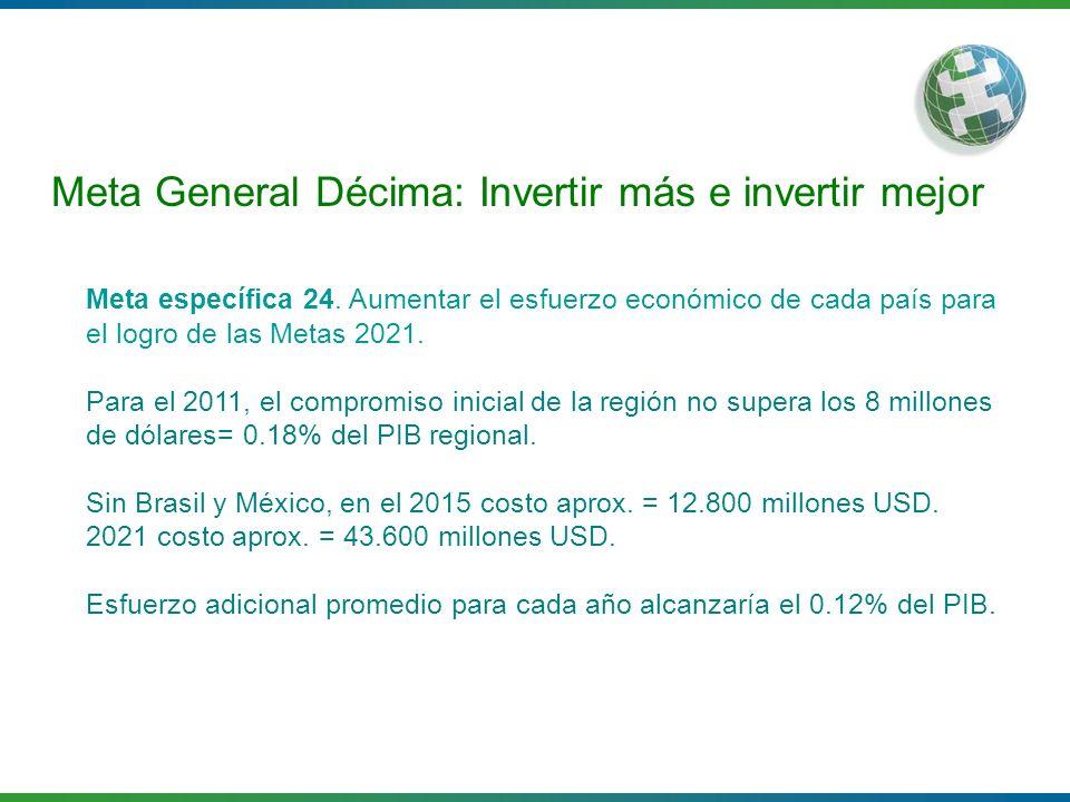 Meta General Décima: Invertir más e invertir mejor